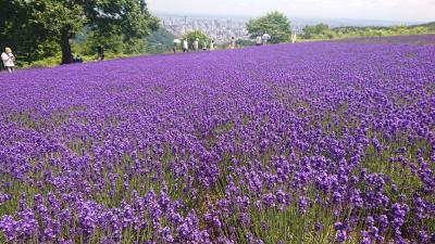 北海道の春夏秋冬 定番観光地とガイドブックに載らない穴場スポットをご紹介。