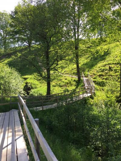 自然保護区をお散歩