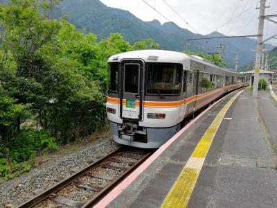 【電車旅行記】飯田線と北遠本線に乗ってみる!