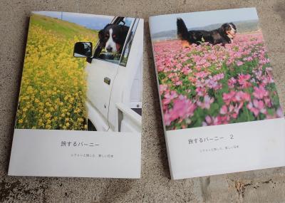 発掘映像 バーニーと行く江の島 2012 &フォトブック製作中