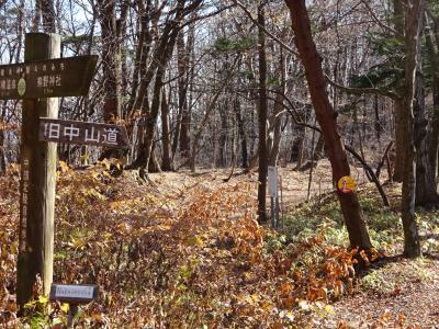ヤマトタケルの家路8 碓井坂より信濃に入り進む