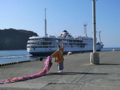 ぶらり島旅/伊豆大島・その3.もうすぐ引退、東海汽船/さるびあ丸.出航の儀(単に眺めるだけ)に参列。
