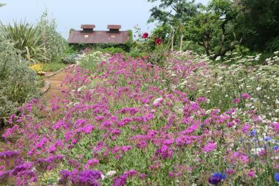 初夏の箱根♪ Vol.4 ☆小田原:美しい女優が愛する庭園 風に乗って♪