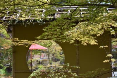 宮城県に行ってきました。