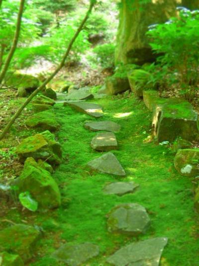 東雲の里あじさい園の新緑に癒される・・・