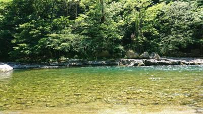 6月前半に諏訪峡でお散歩してきました。
