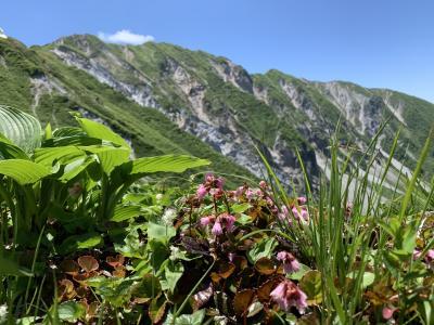 国立公園大山ユートピア登山 2020.6.7日曜日