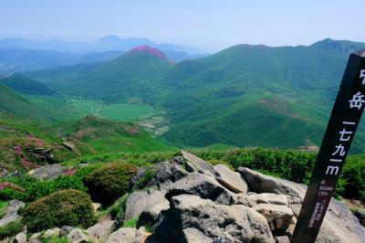 2020九重連山ミヤマキリシマ