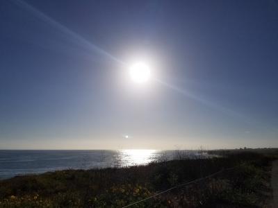 南カリフォルニア クリスタルコ―ブ州立公園