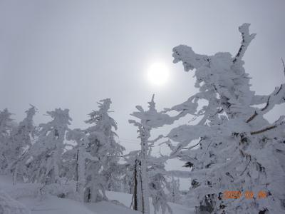 山形県 蔵王温泉 スキーと樹氷