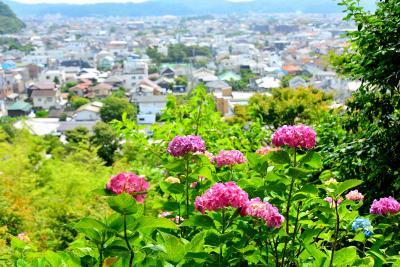 旅恋しい今...4トラ仲間と「鎌倉」リフレッシュ