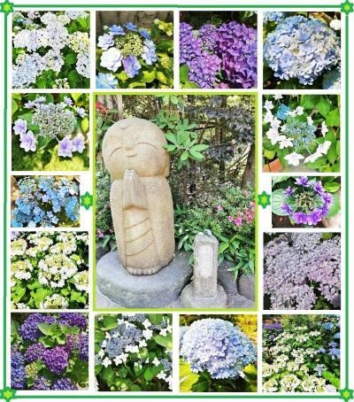 紫陽花咲く 鎌倉へ 歴史探訪の散歩 後編