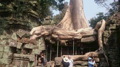 2月のベトナム、カンボジアツアー4