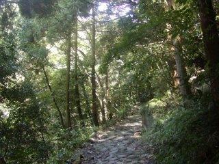東海道を歩いてみました  いよいよ箱根越えです。