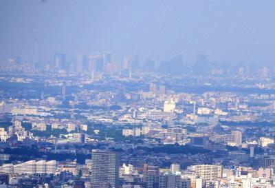 【近郊45】2020.6小学生の時以来の八王子城跡-御主殿跡,本丸460mまで登る 新宿やスカイツリーが見えた