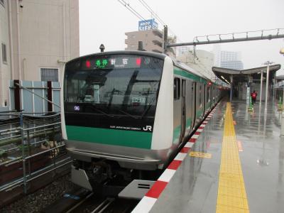 2019年冬・JALの国内線用B787-8で訪ねた都電荒川線と相鉄・JR直通線(その3 相鉄・JR直通線)