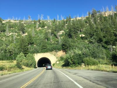 コロラド州 メサ ベルデ 国立公園 - メサ トップ ルーインズ ロード