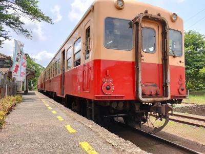 入梅前の小湊鉄道(初夏)