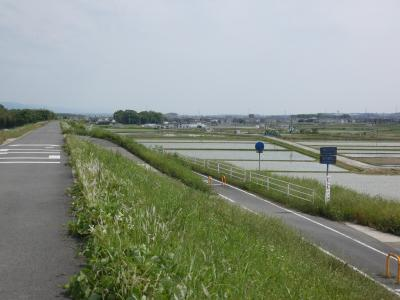 精華 木津川CR 玉水橋から上流(Kizugawa Cycling Road, Seika, Kyoto, JP)