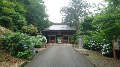 【Day out w/ N】紅葉寺で紫陽花を見て、ついでに浮世絵を観ましょう。