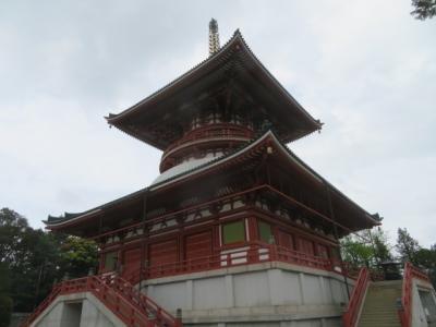 成田山新勝寺・参拝と散策をして表参道でうなぎを食べました