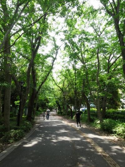 2ヶ月を過ごした緑いっぱいのつくばを思い出探訪【親子で東京往復記5月編その2】