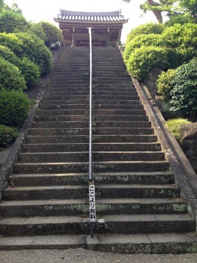 武蔵野三十三観音霊場(26聖天院、27勝音寺、34霊巌寺)=日高市をサイクリング