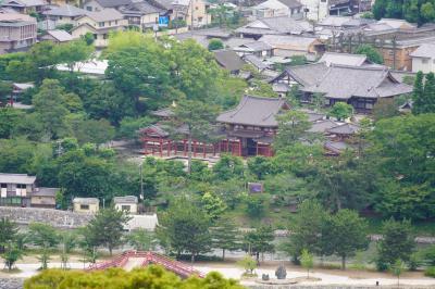 20200615-4 宇治 大吉山登ります。途中、宇治神社と宇治上神社にも