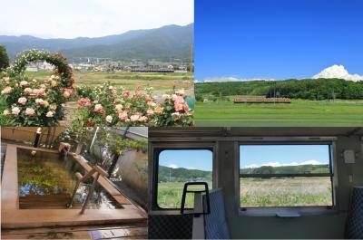 バラ畑、新緑、温泉…初夏の景色に癒された、しなの鉄道115系乗り&撮り歩きの旅~