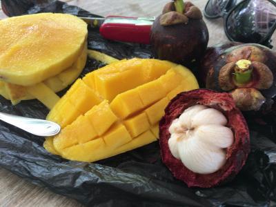 のんびりパンガン島(9)ナマズのラープを食べるの巻