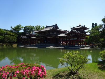 古都京都の文化財(4醍醐寺、5平等院、6宇治上神社)2020.6.8