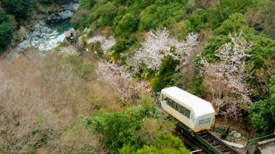 ご招待宿泊で徳島県の秘境 祖谷にある 和の宿 ホテル祖谷温泉へ
