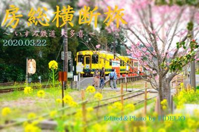 2020春 春の房総横断日帰り旅 ~菜の花が咲く里山と城下町を訪ねて~ 【大多喜編】