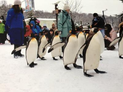 2013年1月 旭山動物園