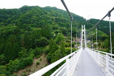 6月後半に上野スカイブリッジヘ行って来ました