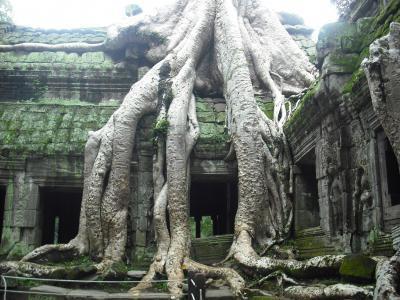 カンボジア、シェムリアップでの思い出