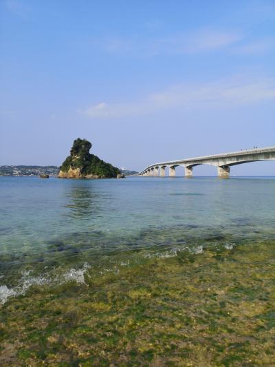沖縄北部をドライブ