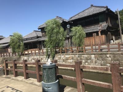 久しぶりのドライブ♪ 佐原の街歩き。おまけで成田のバラ。