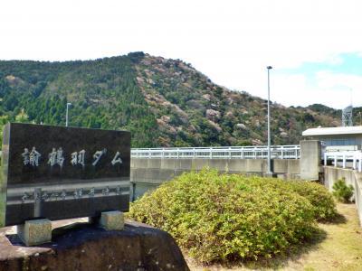 愉鶴羽ダム(自粛前桜)