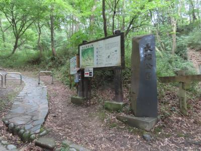 Pottering & climbing 長沼公園 八王子 2020/06/03