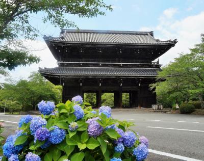 根來寺の多宝塔は凄かった