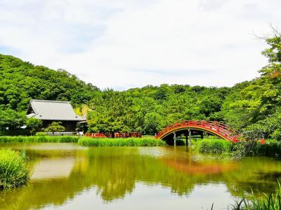 金沢文庫  称名寺 * 海の公園を散歩