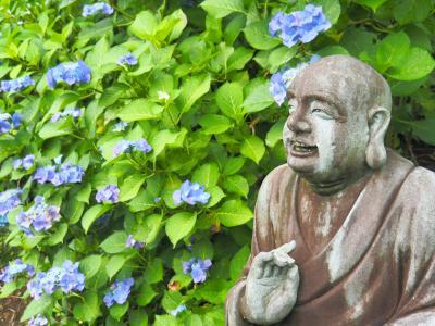 静寂に包まれる光徳寺の紫陽花 羅漢像の魅力にはまる