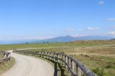 いつか行きたかった美ヶ原を歩いてみました。