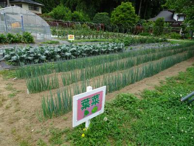 6月:北上農楽校の活動状況