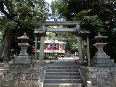 境内の中を電車が走る神社☆花手水のある神社☆なんて読むかわからない神社~三社巡り~
