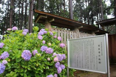 あじさいが美しい多古町の日本寺へ行って来ました♪