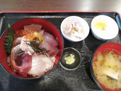 2年振りの福井・小浜港での豆アジ釣りは爆釣でした!!