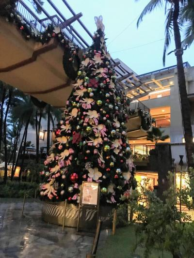 アメリカ ハワイ/オアフ島でクリスマスツリー巡り
