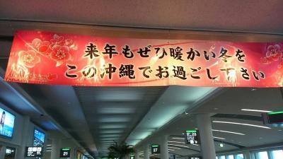 正月沖縄旅行最終記 那覇にもどって~